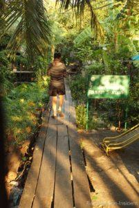In den Eingeweiden von Thonburi