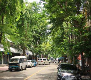 Nang Loeng Umgebung
